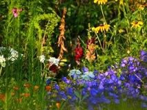 Цветки после дождя Стоковое Фото