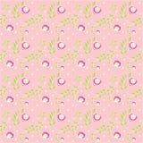 Цветки потехи Стоковые Фотографии RF