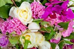 цветки предпосылки изолировали белизну стоковая фотография rf