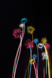 цветки предпосылки черные неоновые Стоковое Изображение RF