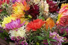цветки предпосылки цветастые предпосылка цветет различное цветасто букет цветет различное Стоковое Фото