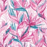 Цветки притяжки руки тропические Стоковое Изображение RF