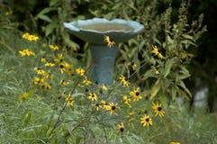 цветки птицы ванны Стоковые Фотографии RF