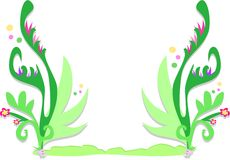 цветки пузырей обрамляют fronds тропические Стоковые Изображения RF