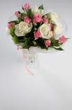 цветки пука Стоковое Изображение
