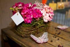 цветки пука Стоковая Фотография RF