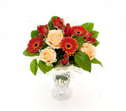 цветки пука стоковое фото