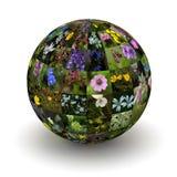 Цветки планеты иллюстрация вектора