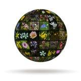 Цветки планеты стоковое изображение rf