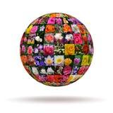 Цветки планеты стоковые изображения