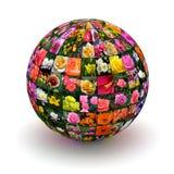 Цветки планеты стоковые фото