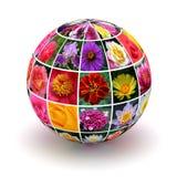 Цветки планеты стоковая фотография