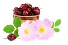 Цветки плода шиповника с ягодами лист и плода шиповника в деревянном шаре изолированном на белой предпосылке Стоковое Изображение