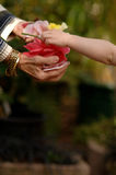 цветки ребенка gifting Стоковая Фотография RF