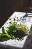 Цветки ретро Стоковые Изображения