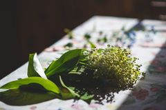 Цветки ретро Стоковое фото RF