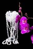 Цветки розовых орхидеи и шариков от белых перл Стоковые Фотографии RF