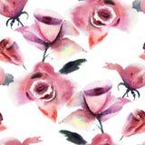 Цветки роз Стоковые Изображения RF