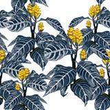 Цветки руки вычерченные красочные тропические зацветая экзотические, ботаническая картина флористических и листьев безшовная в ви иллюстрация штока