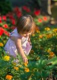 Цветки рудоразборки девушки стоковое изображение rf