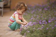 Цветки рудоразборки от сада стоковое изображение