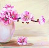 Цветки Сакуры в вазе Стоковые Изображения RF