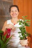 цветки самонаводят женщина стоковые фотографии rf