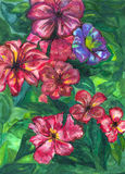 Цветки сада картины акварели иллюстрация штока