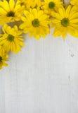 Цветки сада над покрашенной предпосылкой деревянного стола фон с космосом экземпляра Красивые цветки на деревянной предпосылке стоковая фотография