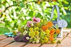 Цветки сада Стоковые Фотографии RF