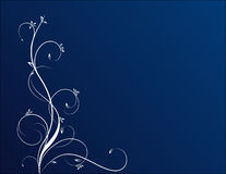 цветки сини предпосылки Стоковые Изображения