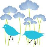цветки сини птиц Стоковое Изображение RF