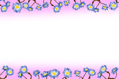 Цветки сини рамки стоковое изображение rf