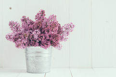 Цветки сирени Стоковое Изображение RF