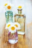 Цветки стоцветов Стоковая Фотография RF
