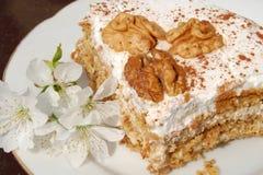 цветки торта Стоковое Изображение
