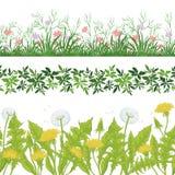 Цветки, трава и листья безшовные, комплект Стоковое фото RF