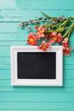 Цветки тюльпанов свежей весны красные, ветви вербы и пустое bla Стоковое Изображение