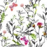 Цветки луга Безшовная травяная предпосылка в черно-белых цветах акварель иллюстрация штока