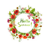 Цветки луга - мак, трава лета Флористический круглый венок акварель Стоковое фото RF