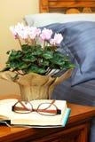 Цветки ухода за больным стоковое фото rf