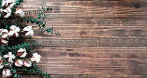 Цветки хлопка и ветви эвкалипта над деревянным столом стоковые изображения rf