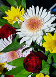 цветки хризантемы букета Стоковая Фотография