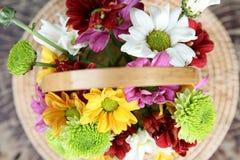 Цветки хризантемы Стоковая Фотография RF