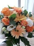 Цветки цветков чудесные стоковое фото