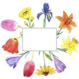 Цветки чертежа акварели Стоковые Изображения RF