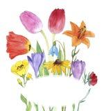 Цветки чертежа акварели Стоковые Фото