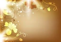 цветки шоколада backgraound коричневые иллюстрация вектора