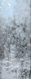 Цветки льда на стекле Стоковая Фотография RF
