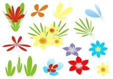 цветки элемента Стоковые Изображения RF